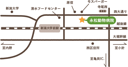 西大通沿いのモスバーガー(新潟大学前店)様の斜め向かいにあります
